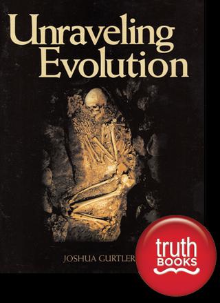 Unraveling Evolution